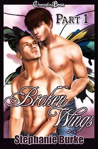 Broken Wings Part 1