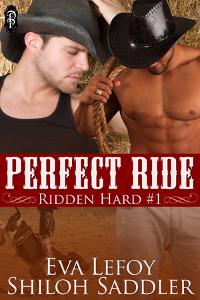 Perfect Ride