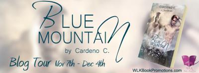 Blue Mountain Banner