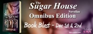 Suggar House Omnibus - Blast Banner copy