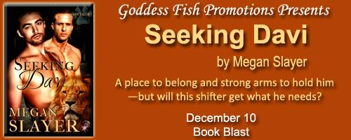 MBB_SeekingDavi_Banner copy