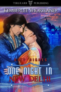 One Night in New Delhi